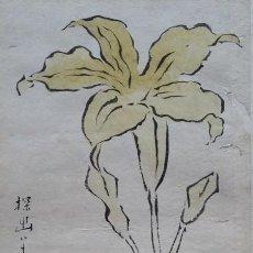 Arte: ANTIGUO DIBUJO JAPONÉS DEL SIGLO XVIII. Lote 197674896