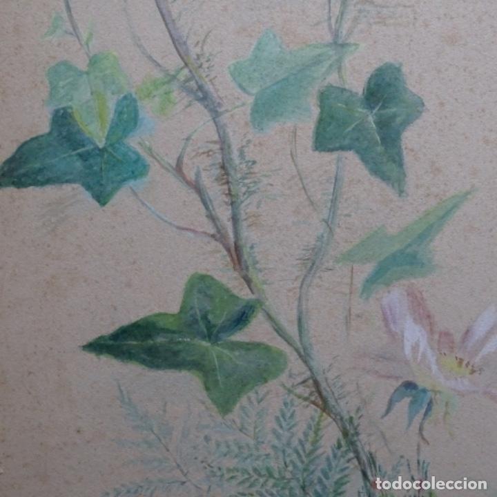Arte: Excelentes dibujos del s. Xix.retrato a carboncillo y dibujo a color.maestro. - Foto 25 - 198605177