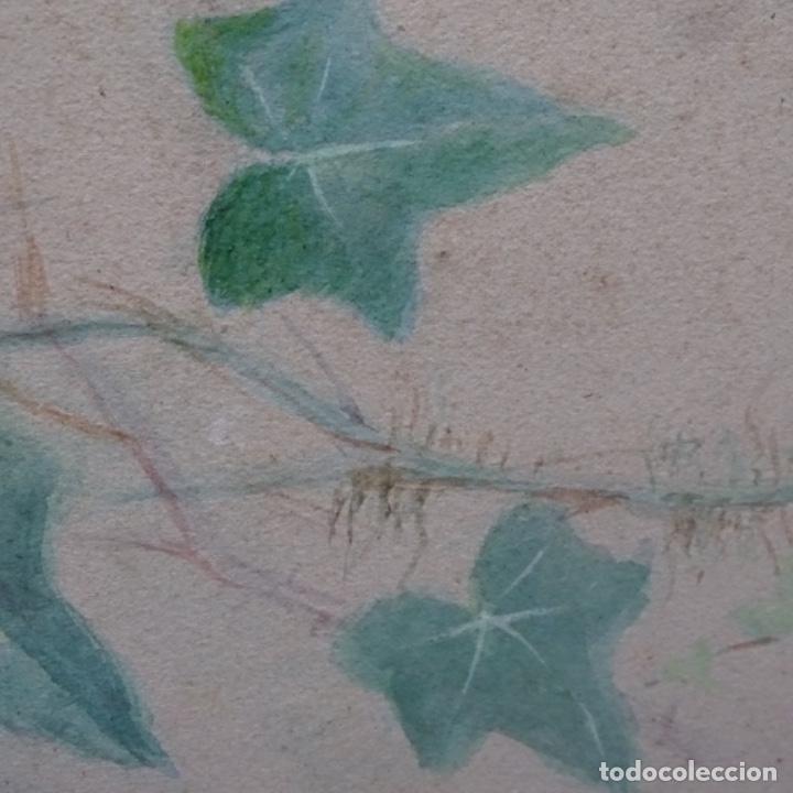 Arte: Excelentes dibujos del s. Xix.retrato a carboncillo y dibujo a color.maestro. - Foto 31 - 198605177