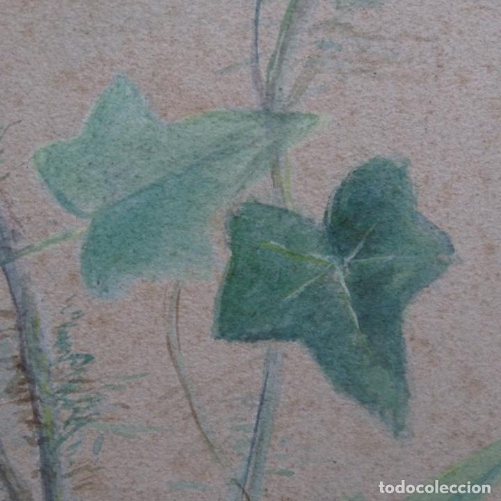 Arte: Excelentes dibujos del s. Xix.retrato a carboncillo y dibujo a color.maestro. - Foto 37 - 198605177