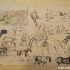 Arte: ESTUDIOS DE CABALLOS A TINTA Y PAISAJE A LAPIZ Y ACUARELA. 17 X 23,5 CM. Lote 199762267