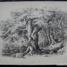 Art: ESCENA DE CAZA EN WINDSOR FOREST - ORIGINAL SIGLO XIX. Lote 201333402