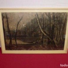 Arte: CARBONCILLO FIRMADO ROSARIO 1921,SOBRE PAPEL CANSON & MONTGOLFIER.DIBUJO 60 X 39 CM.. Lote 206293807