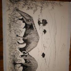 Arte: DIBUJO A BOLIGRAFO SOBRE CARTULINA MANUEL BUENO. Lote 206406026