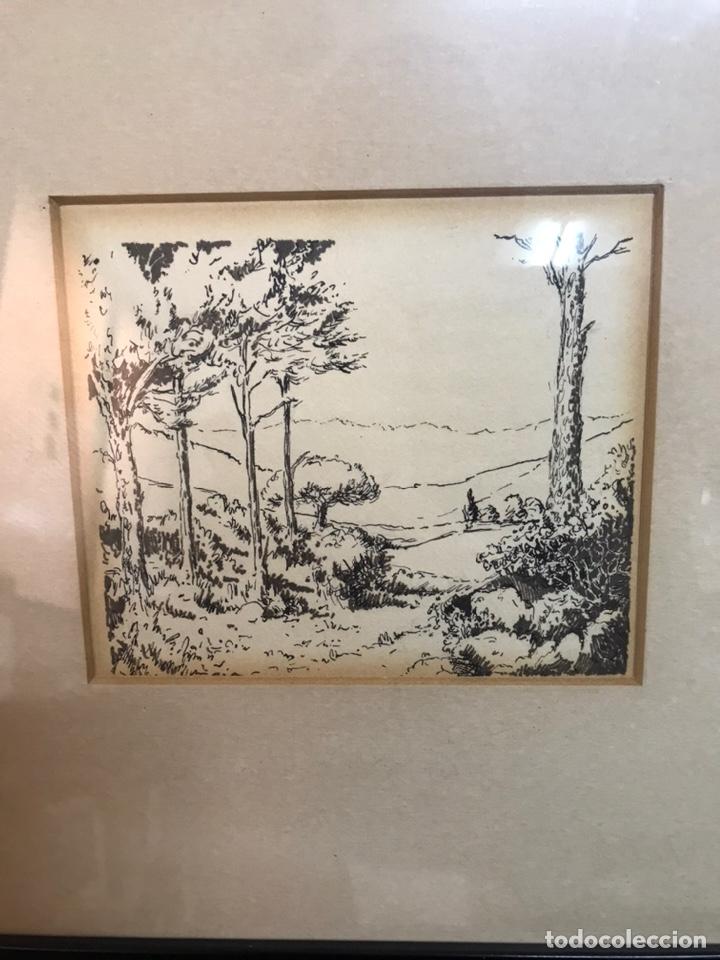 Arte: Dibujo a la tinta firmada por J CAMP DOMENECH - Foto 4 - 210224710