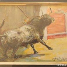 Arte: ÓLEO DE MORATALLA BARBA, TORO SALIENDO AL RUEDO. Lote 221846272