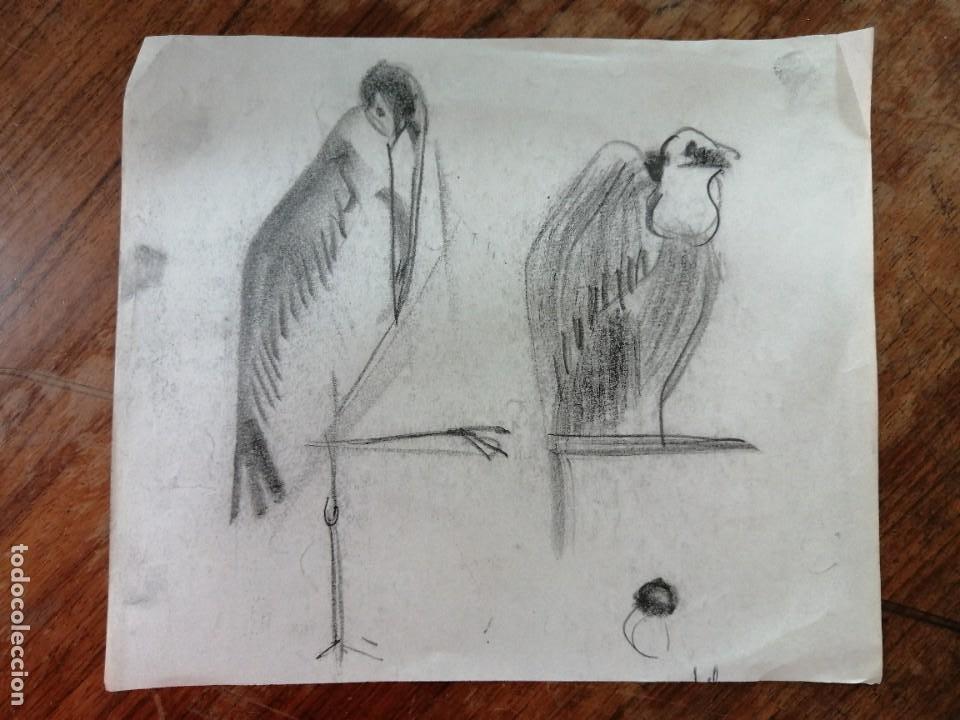 ANONIMO. DIBUJO A CARBON. PAJAROS (Arte - Dibujos - Contemporáneos siglo XX)