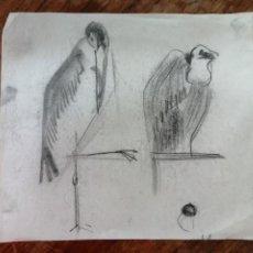 Arte: ANONIMO. DIBUJO A CARBON. PAJAROS. Lote 221875077