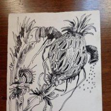 Arte: JOSÉ MÁRQUEZ ALCALÁ - ALCACHOFA. Lote 222850122