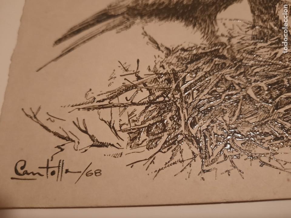 Arte: Lamina pintada .firmado por Cantolla /68 - Foto 2 - 234772200