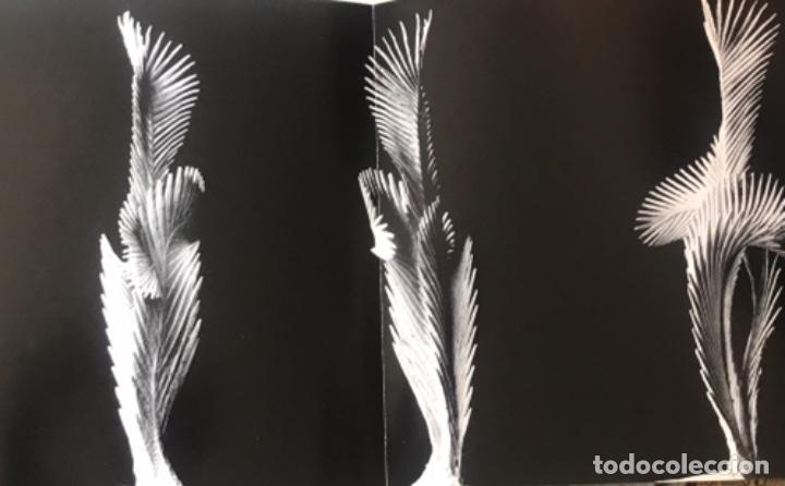 Arte: DIBUJO A TINTA DE APEL.LES FENOSA SOBRE LIBRO LA POLIGRAFA Su vida, su arte. VENDRELL 24-7-84. - Foto 16 - 236090535