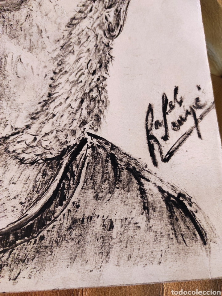 Arte: RAFEL SUNYER, DIBUJO RETRATO DE SEÑOR. ESCUELA CATALANA 25X35CM BUENA CALIDAD. - Foto 3 - 236979950