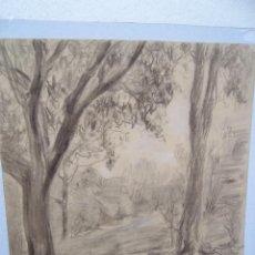Arte: BONITO PAISAJE DIBUJO AL LAPIZ. Lote 245401220