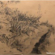 Arte: COLECCIÓN DE DIBUJOS INÉDITOS DEL PINTOR JUAN RIVAS Y ORTIZ (1845-¿1920?) GRANADA ALBUÑOL. ALPUJARRA. Lote 255956140