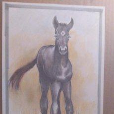Arte: POTRO - DIBUJO ORIGINAL A LAPIZ GRAFITO Y COLOR, FIRMADO.30X21,5CM -A4. MUCHO MEJOR EN MANO!. Lote 262152510