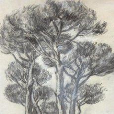 Arte: RAMON RIBAS RIUS (BARCELONA, 1903 - 1983) DIBUJO A CARBON Y TOQUES DE CLARION. PAISAJE DE TARADELL. Lote 262180790