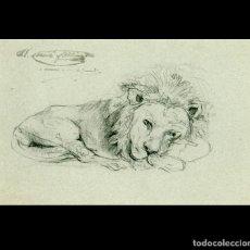 Arte: DIBUJO ORIGINAL - RAMON MARTÍ ALSINA - APUNTE CABEZA DE LEÓN - CIRCA 1862 - FIRMA TESTAMENTARIA. Lote 264312136