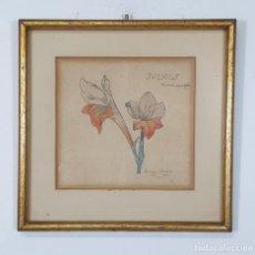 Arte: BERGA Y BOADA (OLOT 1872- SANT FELIU DE GUIXOLS 1923 - DIBUJO - JULIOLS, BANDERA ESPAÑOLA - 1913. Lote 275115493