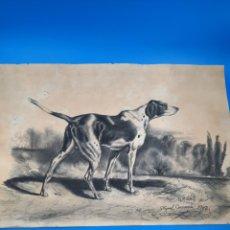 Arte: ANTIGUO DIBUJO 1902. PERRO DE CAZA. FIRMADO MIGUEL CARRASCO. Lote 276235128