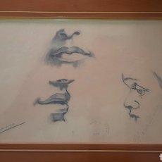 Arte: DIBUJO/BOCETO LÁPIZ-CARBONCILLO ARTE REALISTA FACIAL -FIRMADO M°MUÑOZ MORALES.. Lote 295446568