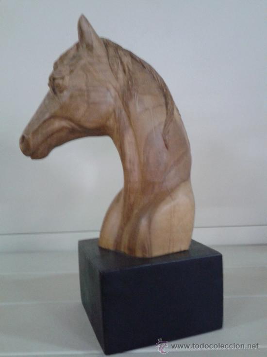 Seccion a caballo - 1 5
