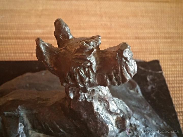 Arte: Paz Figares (Madrid 1958-2007) , Escultura en bronce de un perro snauzer, firmada - Foto 5 - 49258652