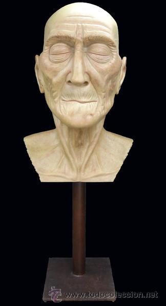 Arte: Escultura figurativa talla madera retrato hombre anciano - Foto 2 - 49460809