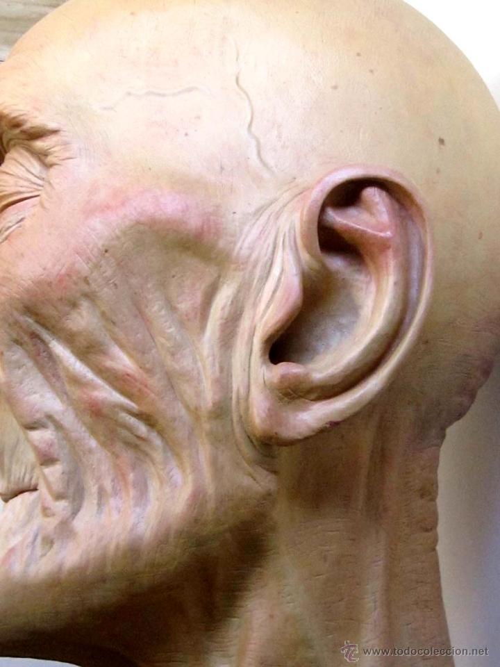 Arte: Escultura figurativa talla madera retrato hombre anciano - Foto 4 - 49460809