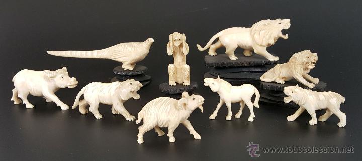 COLECCION DE 9 FIGURAS DE ANIMALES EN HUESO TALLADO. PRINCIPIOS SIGLO XX. (Arte - Escultura - Hueso)