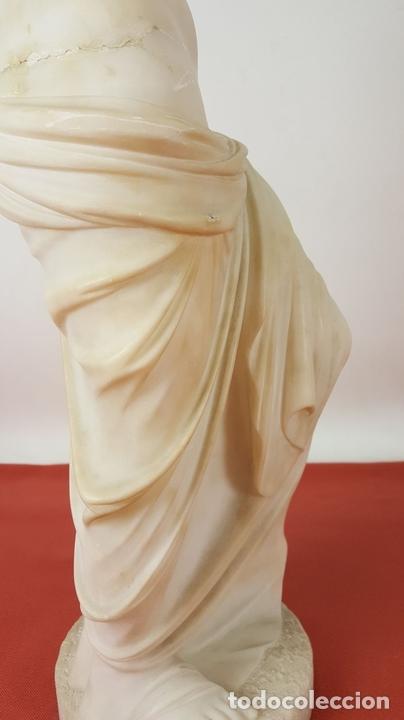 Arte: VENUS DE MILO. ESCULTURA EN MARMOL. SIGLO XIX-XX. - Foto 25 - 151943848