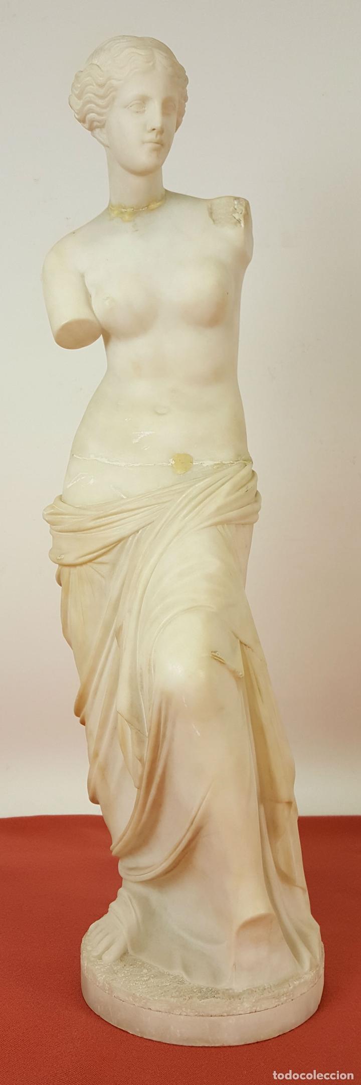 VENUS DE MILO. ESCULTURA EN MARMOL. SIGLO XIX-XX. (Arte - Escultura - Piedra)