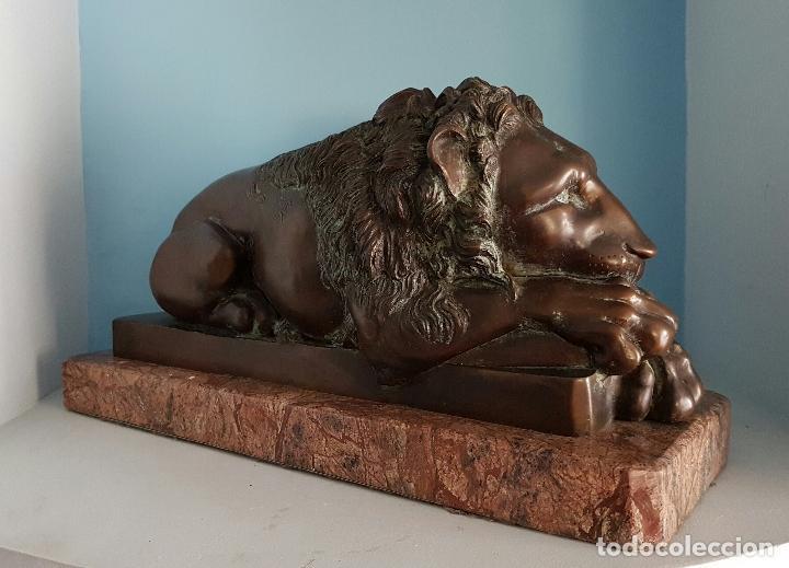 Arte: Gran escultura antigua de majestuoso León en bronce macizo sobre peana de marmol, P.S.XX . - Foto 3 - 73049591