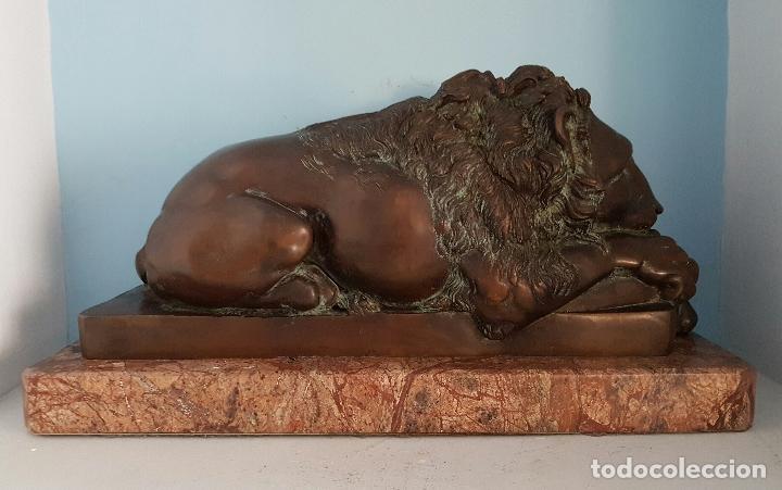 Arte: Gran escultura antigua de majestuoso León en bronce macizo sobre peana de marmol, P.S.XX . - Foto 4 - 73049591