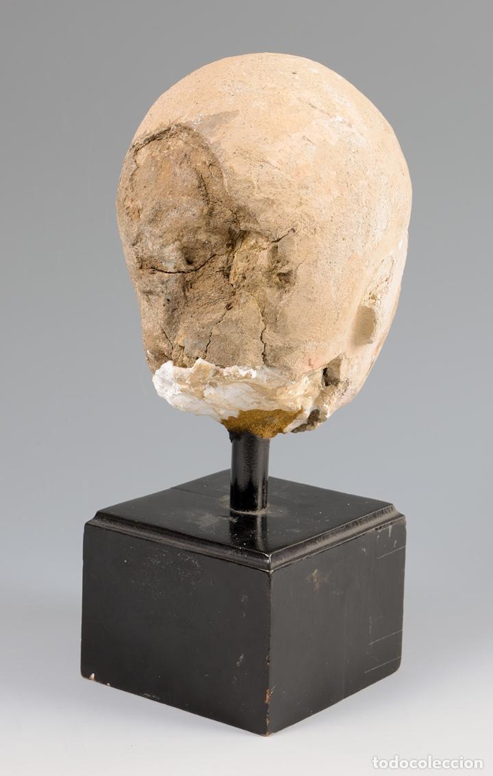 Arte: Escultura Cabeza helenística. Hacia siglos III-IV d.C. Terracota y base de madera. - Foto 4 - 74945255