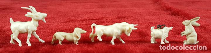 5 FIGURAS DE ANIMALES EN HUESO TALLADO. PRINCIPIOS SIGLO XX. (Arte - Escultura - Hueso)