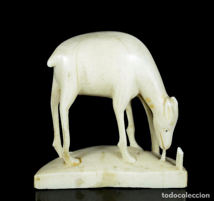 ANTIGUA ESCULTURA MARFIL ANIMAL (Arte - Escultura - Marfil)