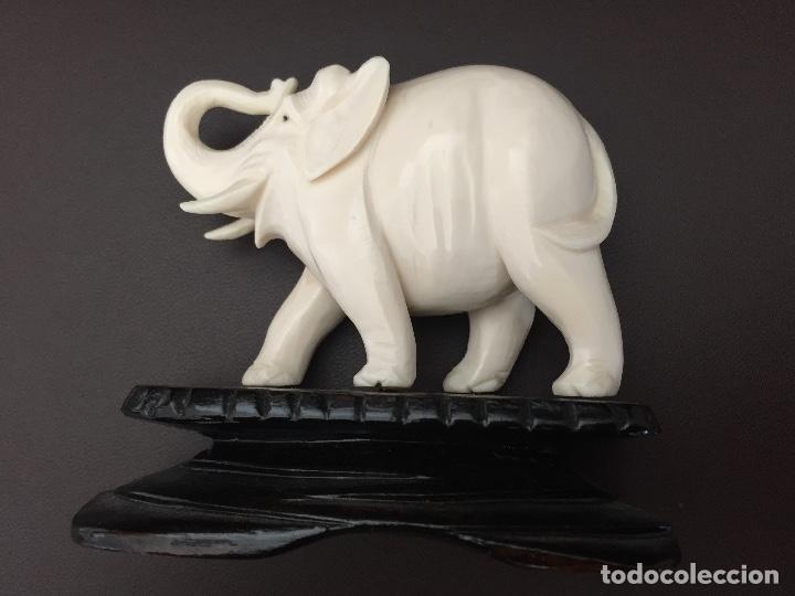 Arte: Figura de elefante en talla de marfil - Foto 5 - 51207964