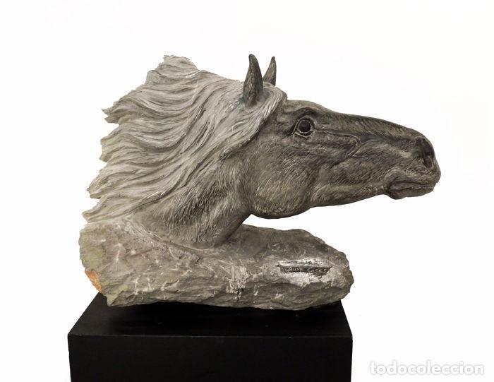 JAUME CASES,BARCELONA- ESCULTURA BUSTO DE CABALLO EN PIEDRA DE CALATORAO- OBRA ÚNICA (Arte - Escultura - Piedra)