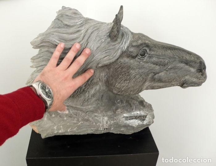 Arte: Jaume Cases,Barcelona- Escultura busto de caballo en piedra de Calatorao- Obra única - Foto 4 - 54885914