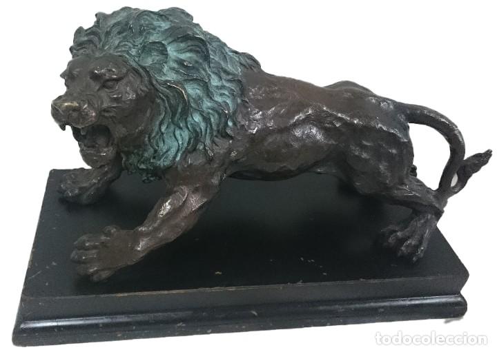 ANTIGUO LEÓN DE BRONCE EN POSICIÓN DE ATAQUE CON PEANA DE MADERA. SIGLO XIX. 38X25X17CM.ESPECTACULAR (Arte - Escultura - Bronce)