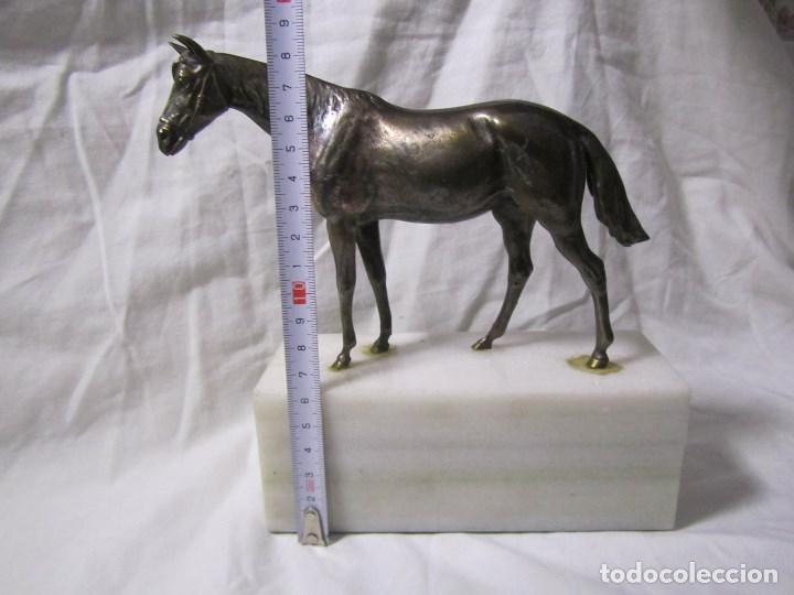 Arte: Figura de caballo en bronce sobre peana de mármol blanco Torres - Foto 2 - 136148186