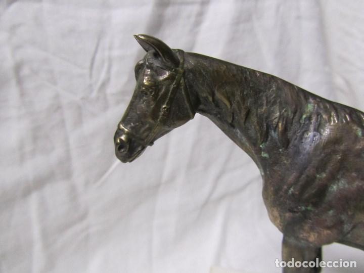 Arte: Figura de caballo en bronce sobre peana de mármol blanco Torres - Foto 4 - 136148186