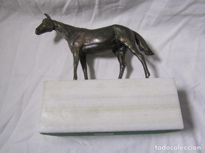 Arte: Figura de caballo en bronce sobre peana de mármol blanco Torres - Foto 12 - 136148186