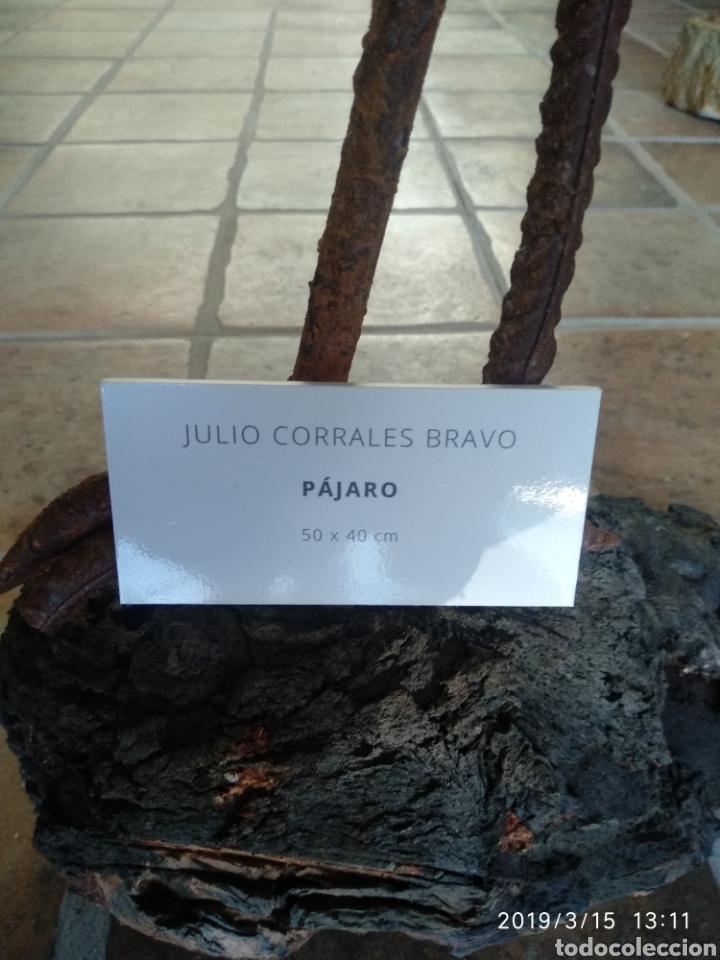 Arte: Escultura pajaro cuervo en hierro por julio corrales bravo - Foto 2 - 155241669