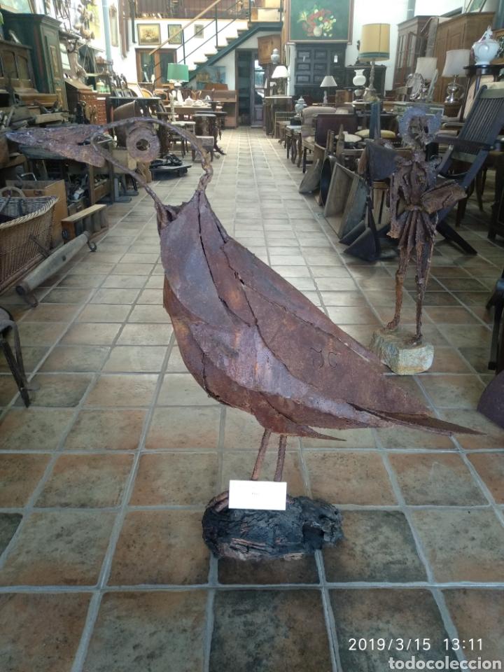Arte: Escultura pajaro cuervo en hierro por julio corrales bravo - Foto 3 - 155241669