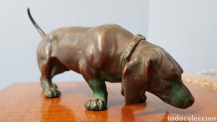 Arte: Escultura bronce antigua gran calidad de perro salchicha, sin firma. - Foto 3 - 159203288