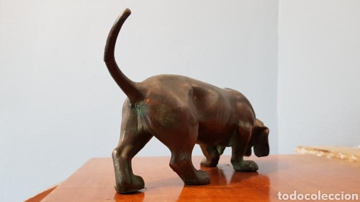 Arte: Escultura bronce antigua gran calidad de perro salchicha, sin firma. - Foto 5 - 159203288