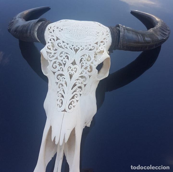 CALAVERA CON TALLA DE HARLEY DAVIDSON (Arte - Escultura - Hueso)