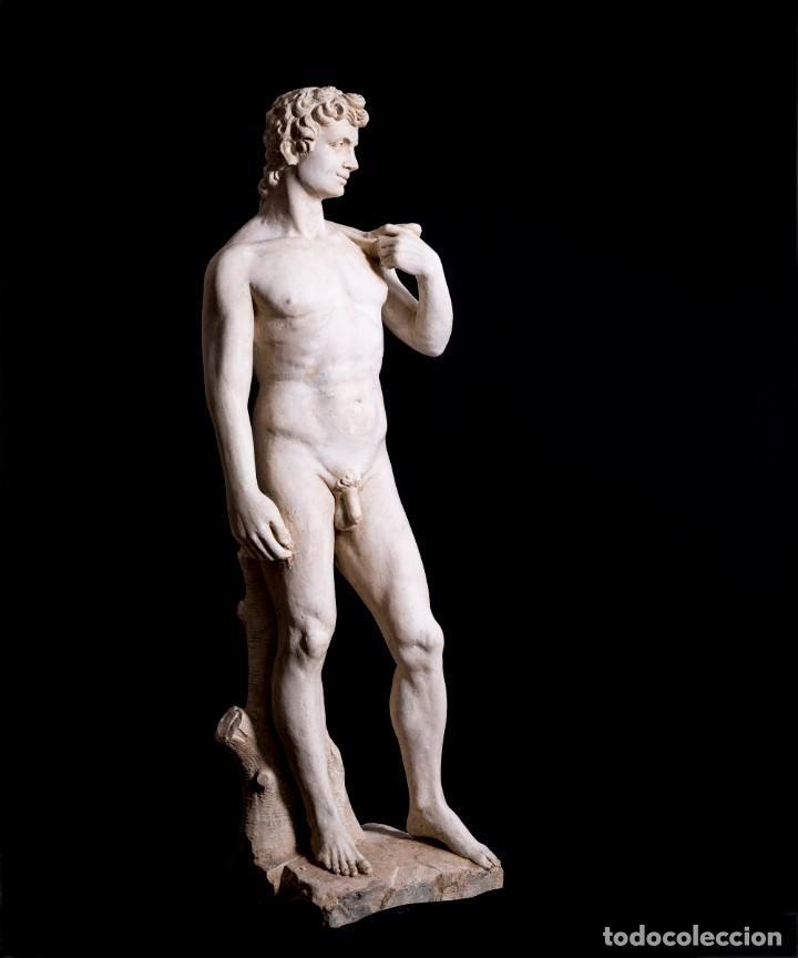 Arte: Escultura David De Florencia - Foto 7 - 170918330