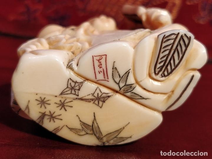 Arte: Antigua colección de 12 netsukes de marfil, con delicada talla y motivos. Firmados. - Foto 7 - 53845044